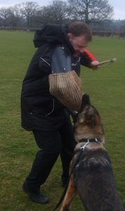 Security Dogs west midlands, dog patrols, security services